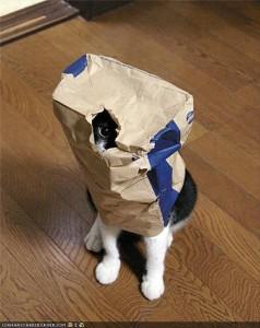 Peeping bag